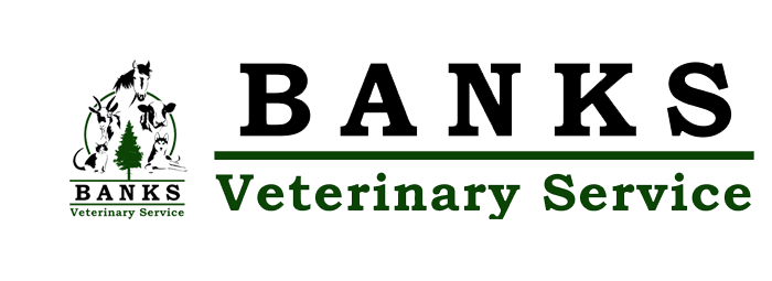 Banks Veterinary Service
